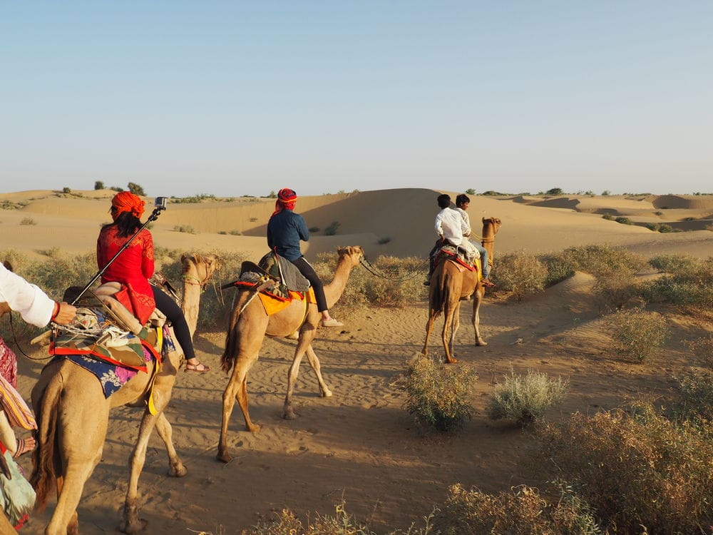 on the camel in the that desert