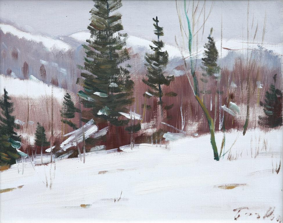 Березнянський пейзаж 1969