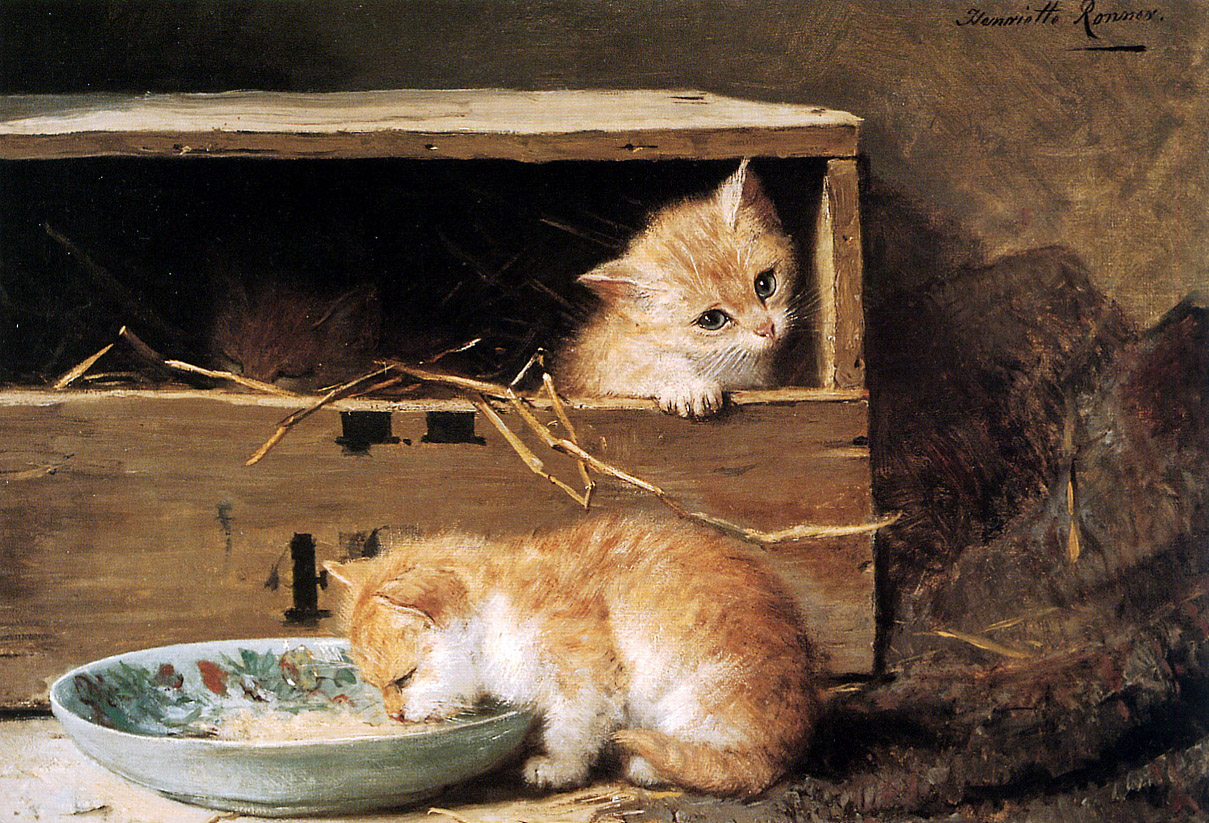 1313674324_two-kittens-in-a-shed_www.nevsepic.com.ua