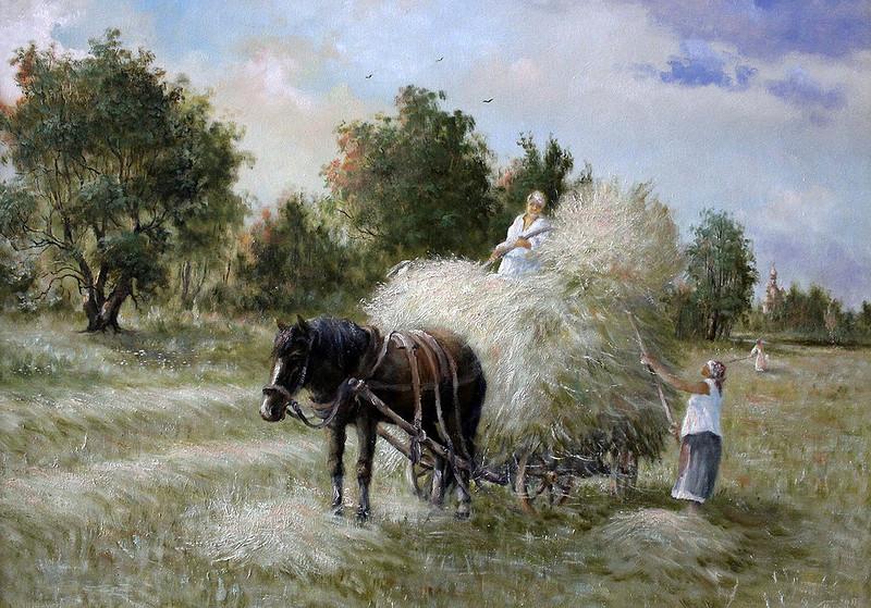 В поле летом