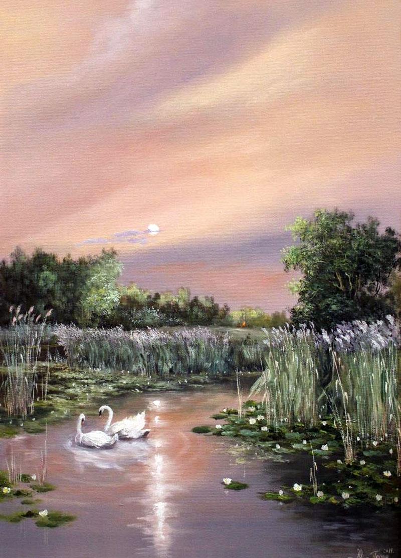Верность лебедей