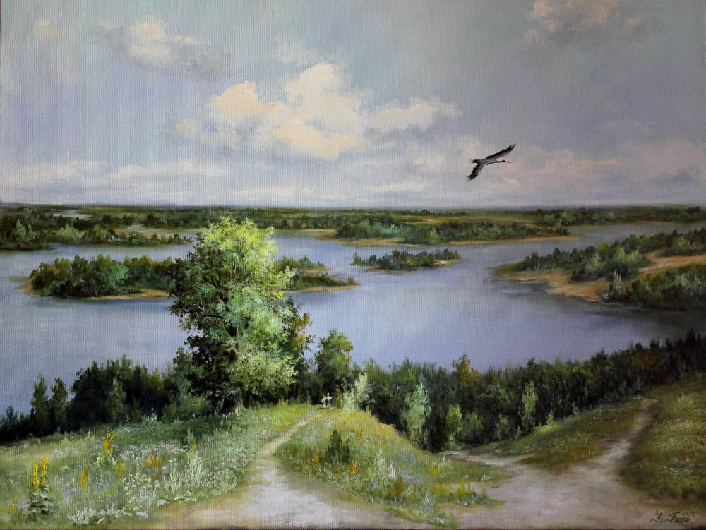 Затоки Днепра