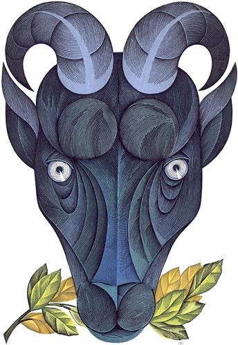 goluboy-koze