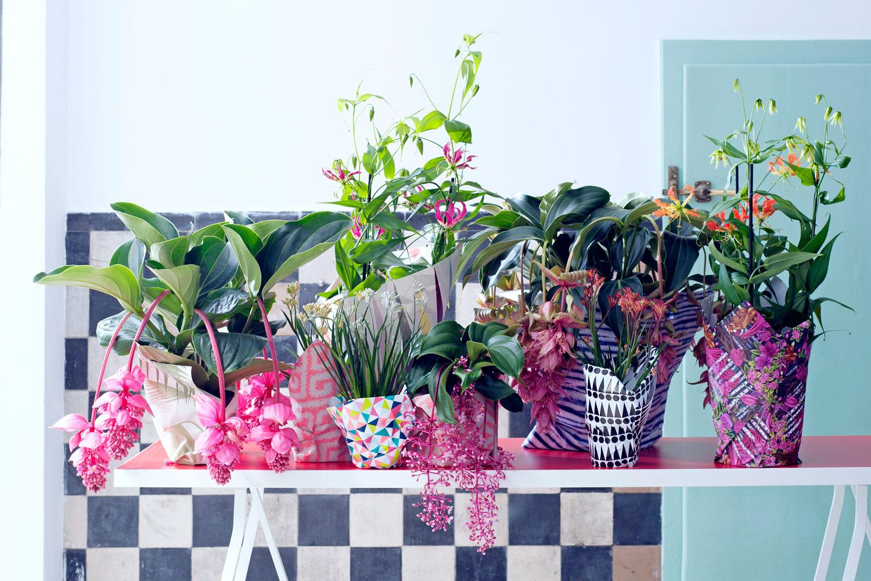 Blumentöpfe selber machen mit Folie