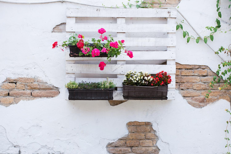 Palette an der Wand mit Blumen.