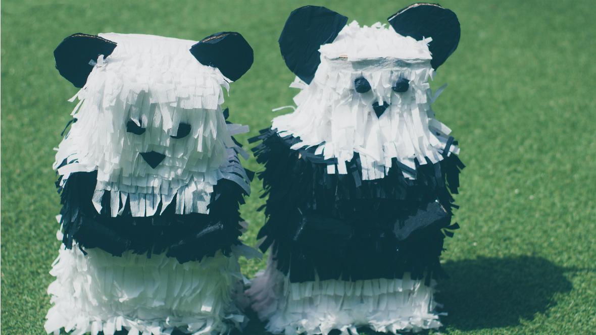 Zwei Panda-Pinatas