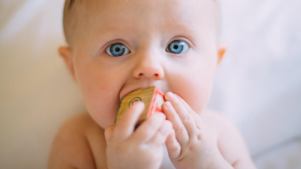 Baby kauft auf Bauklotz