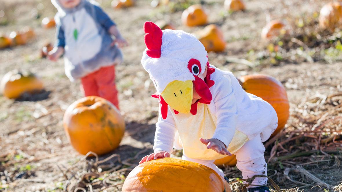Kleinkinder in Kostümen spielen auf dem Kürbisfeld