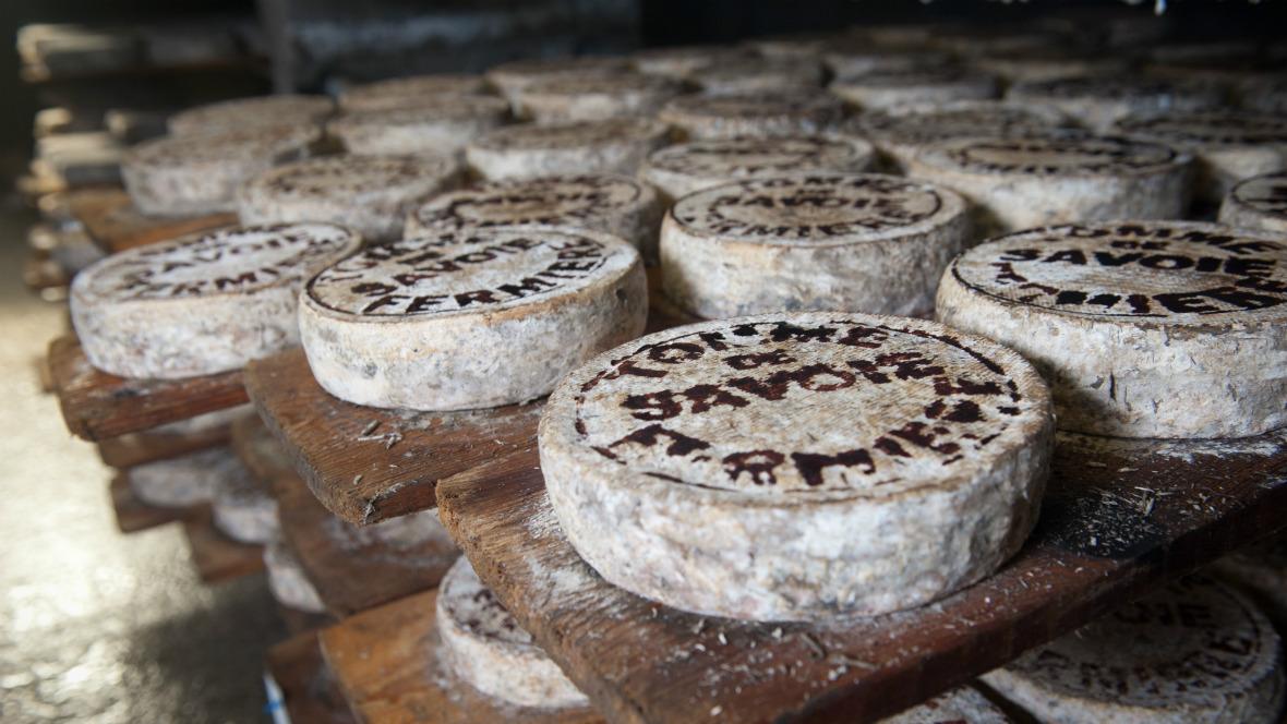 Listeriose kann bedingt werden durch Käsesorten, die aus Rohmilch hergestellt wurden.