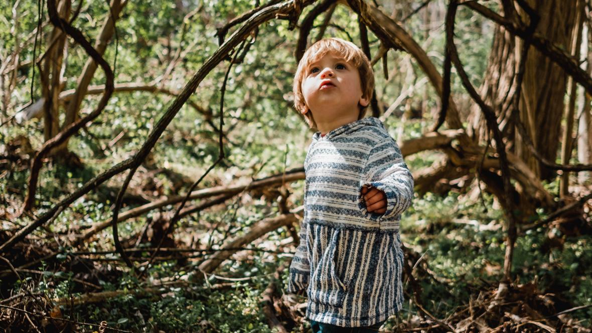 Kind 2 Jahre steht im Wald