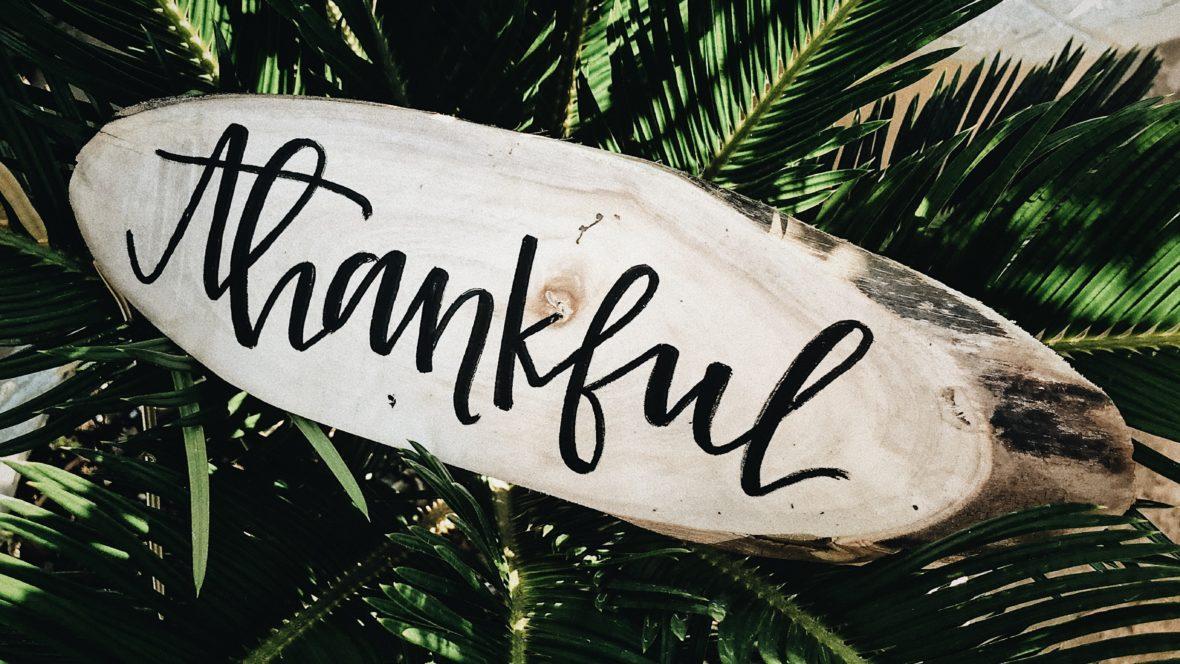 Sind wir wirklich dankbar für all die schönen Aspekte in unserem Leben?