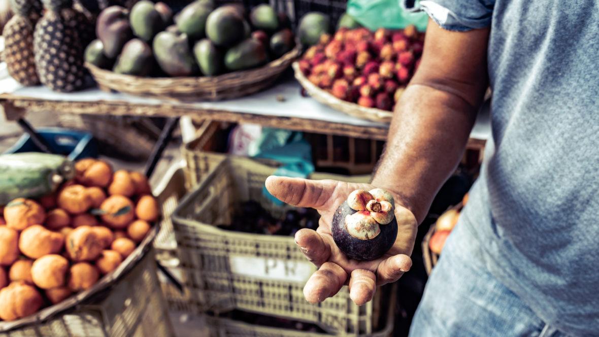 Die Mangosteen hat einige gesundheitsfördernde Eigenschaften, die nicht zu verachten sind.
