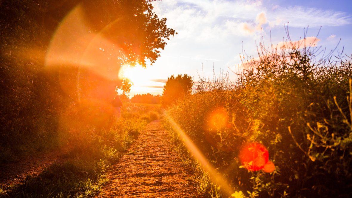 Die Sonne gibt uns Kraft und neue Energie.