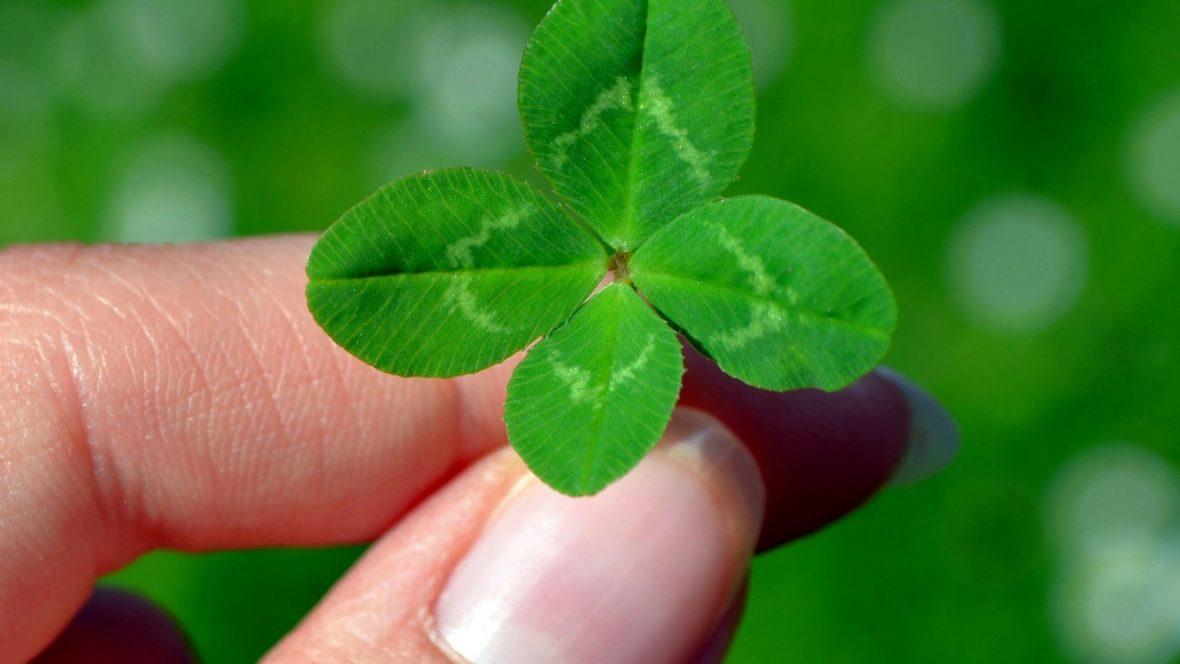 Es ist so einfach, sein Glück sofort in die Tat umzusetzen!