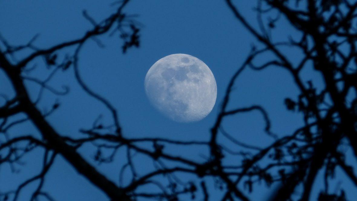 Die unterschiedlichen Mondphasen