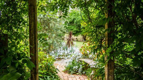 Test z lektury Tajemniczy ogród
