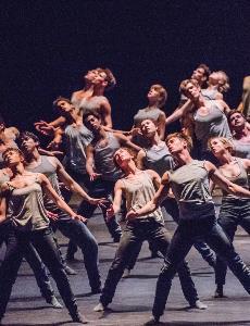 Ballet: Triple Bill - Flight Pattern/Within the Golden Hour/ New York