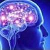 :brain2: