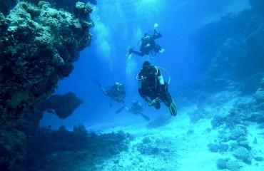 nurkowanie na Wyspach Kanaryjskich