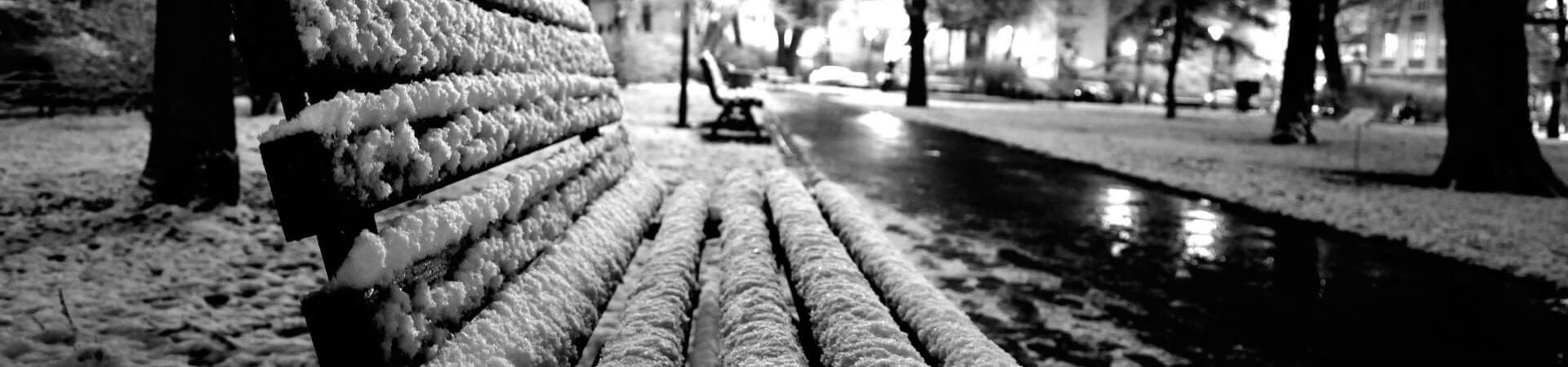 planty w krakowie zimą