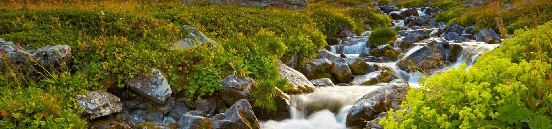 Alpejskie krajobrazy gór kackar