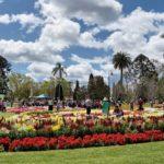destinos mas economicos 2017 toowoomba australia
