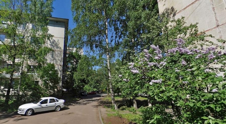 Петра Смородина улица
