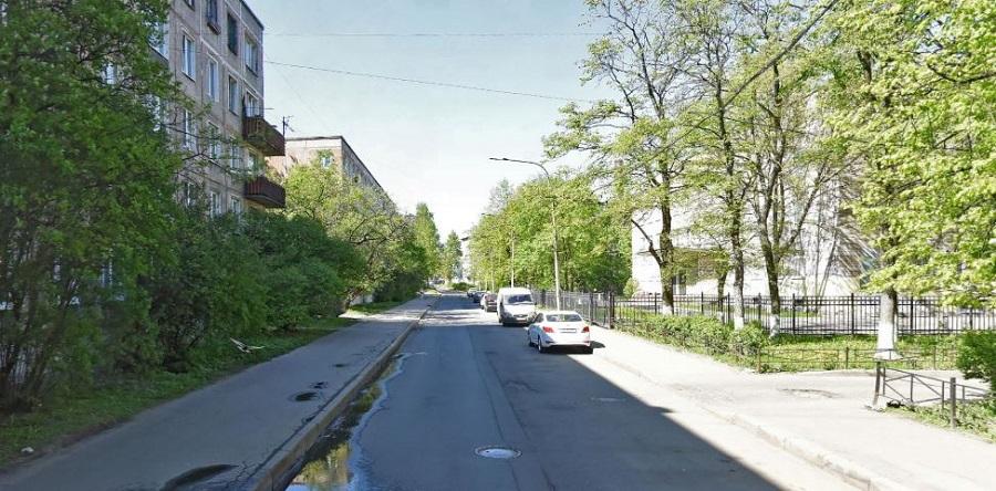 Пинегина улица