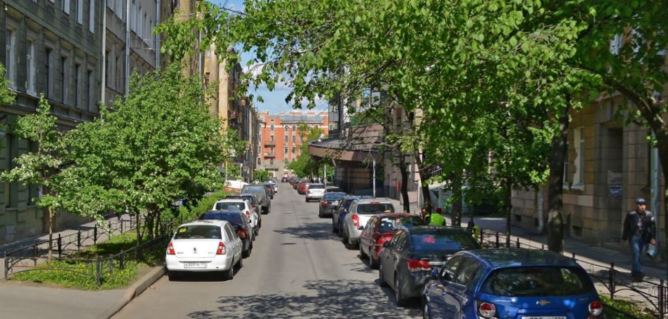 Ропшинская улица