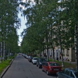 Сестрорецкая улица