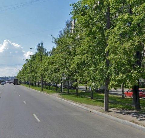 Сизова проспект