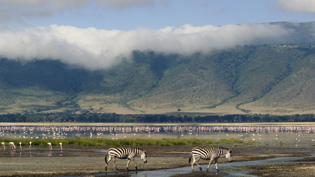 Utazások, kalandok - Ngorongoro