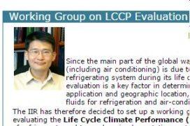 Richtsnoeren voor de LCCP
