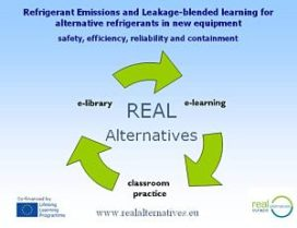 Vanaf 2015 blended learning met REAL Alternatives