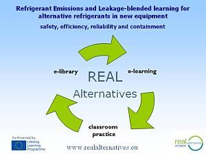 Vanaf 2015 blended learning met REAL Alternatives