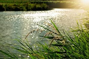 Potentie voor thermische energie uit water 'groter dan gedacht'