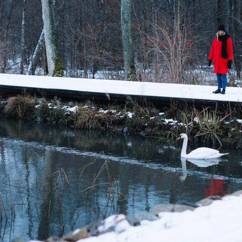 6 vintertips i Växjö