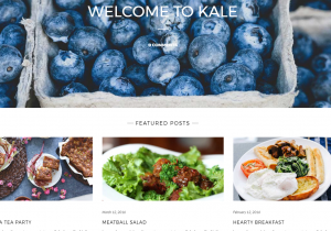 Wordpress Theme Kale