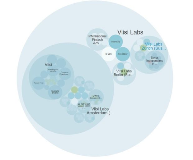 Viisi Labs - Sustainable fintech