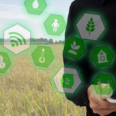 Symbolbild zu IoT-Umweltschutz