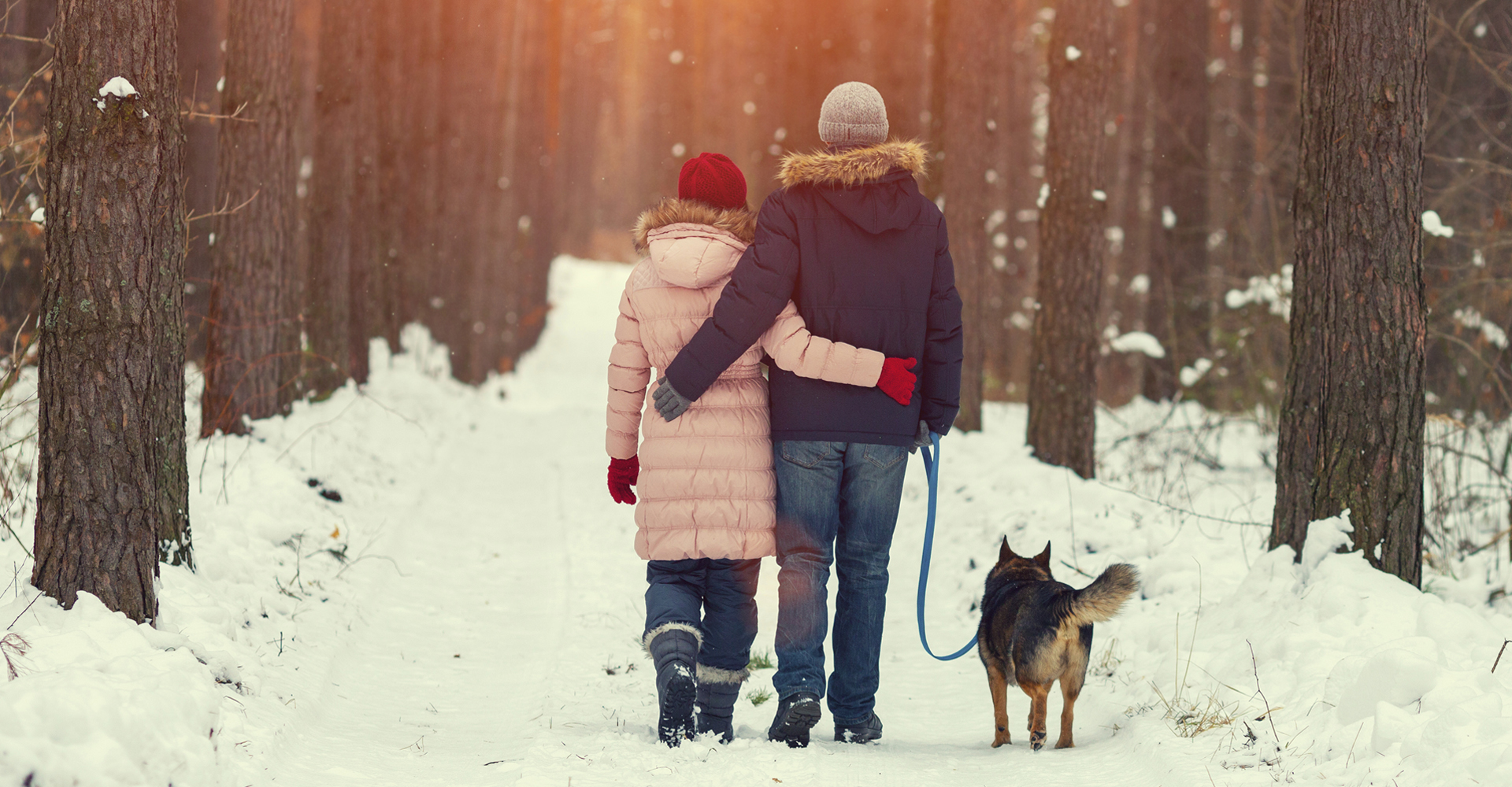Young happy couple with dog walking in the winter forest back to