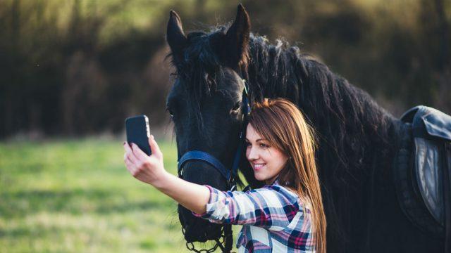 pferdefreunde kennenlernen