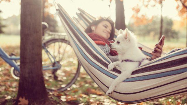 Weißer Hund und junge Frau liegen in der Hängematte.