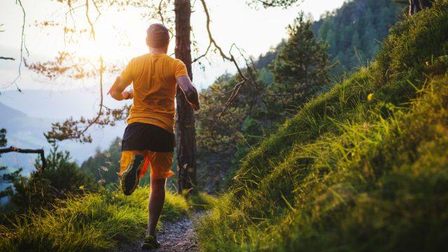 Junger Mann absolviert ein Lauf-Training im Wald.