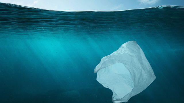 Planet or Plastic? Weniger Plastik nutzen