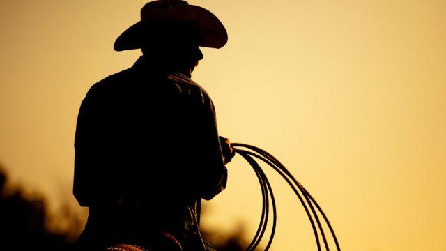 Cowboy hält sein Lasso und reitet auf dem Pferd.