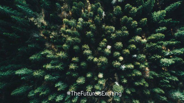 Drohnen helfen bei der Aufforstung von Wäldern