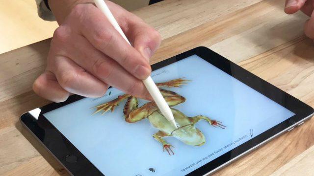 Den Apple Pencil zum Zeichnen auf dem iPad-Display nutzen.