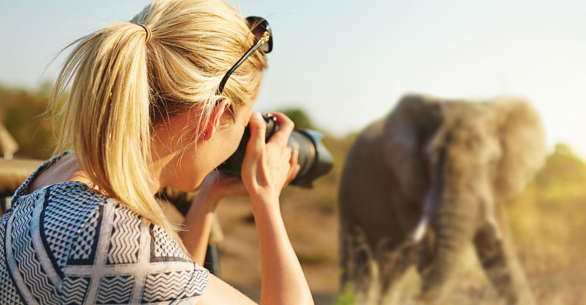 Junge Frau knipst das Foto eines Elefanten mit ihrer Kamera.