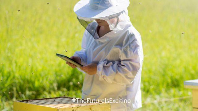 KI und smarte Technologien gegen das Bienensterben